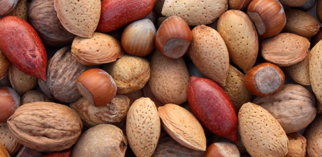 Les oléagineux : noix, amande… Riches en bonnes graisses!