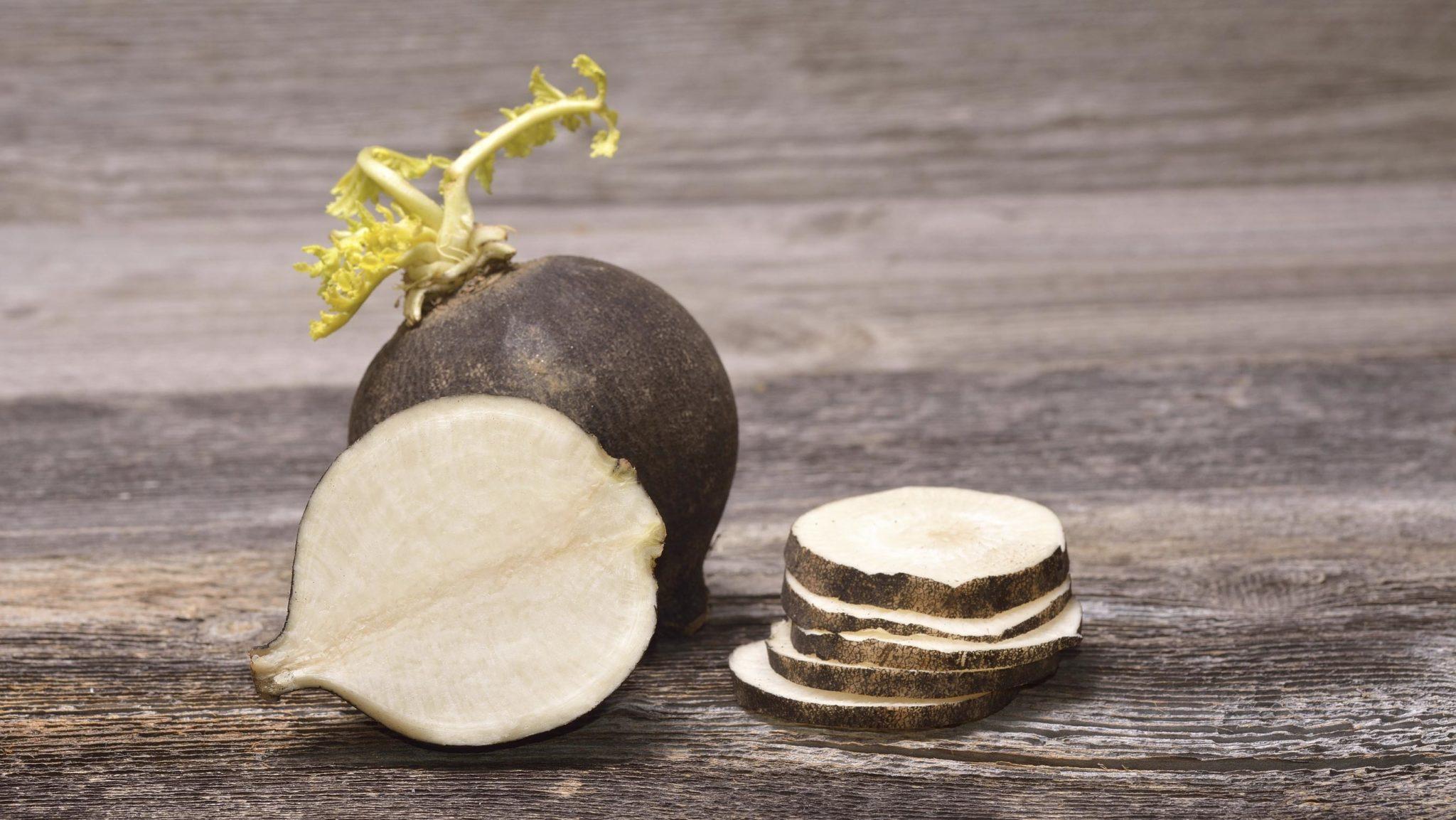 Le radis noir : l'atout santé de l'automne